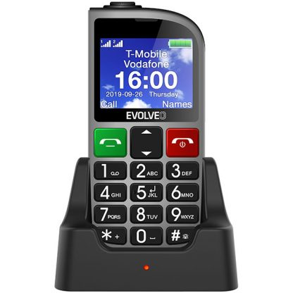 EVOLVEO EasyPhone FM silver